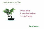 tao te ching video