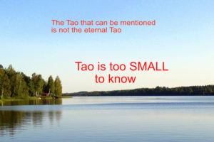 Tao is too small to know