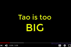 Tao is too big to know