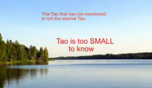 tao explained - tao is too small to know